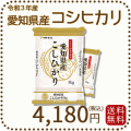 【H30年産】【送料無料】愛知県産こしひかり10kg(5kg×2袋)