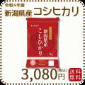 【H30年産】【送料無料】白米 新潟県産コシヒカリ 5kg