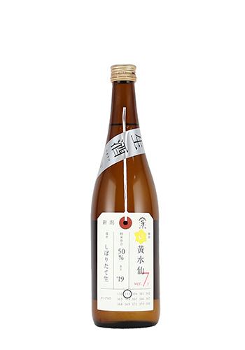 加茂錦 黄水仙