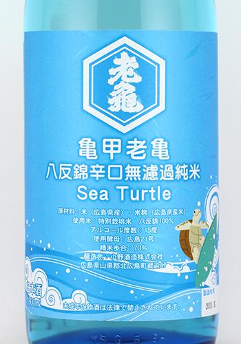 亀甲老亀 sea Turtle