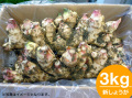 「土佐の大地のそのまんま土付き新大生姜(しょうが)」約3.0kg