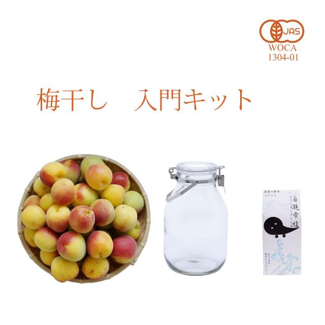 初めての梅干し作りを応援 南高梅専門店の本格派 簡単梅干し入門キット(レシピ付き・送料無料)  1kg