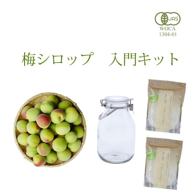初めての梅シロップ作りを応援します 本格専門店の簡単梅シロップ入門キット(レシピ付き・送料無料) 1kg