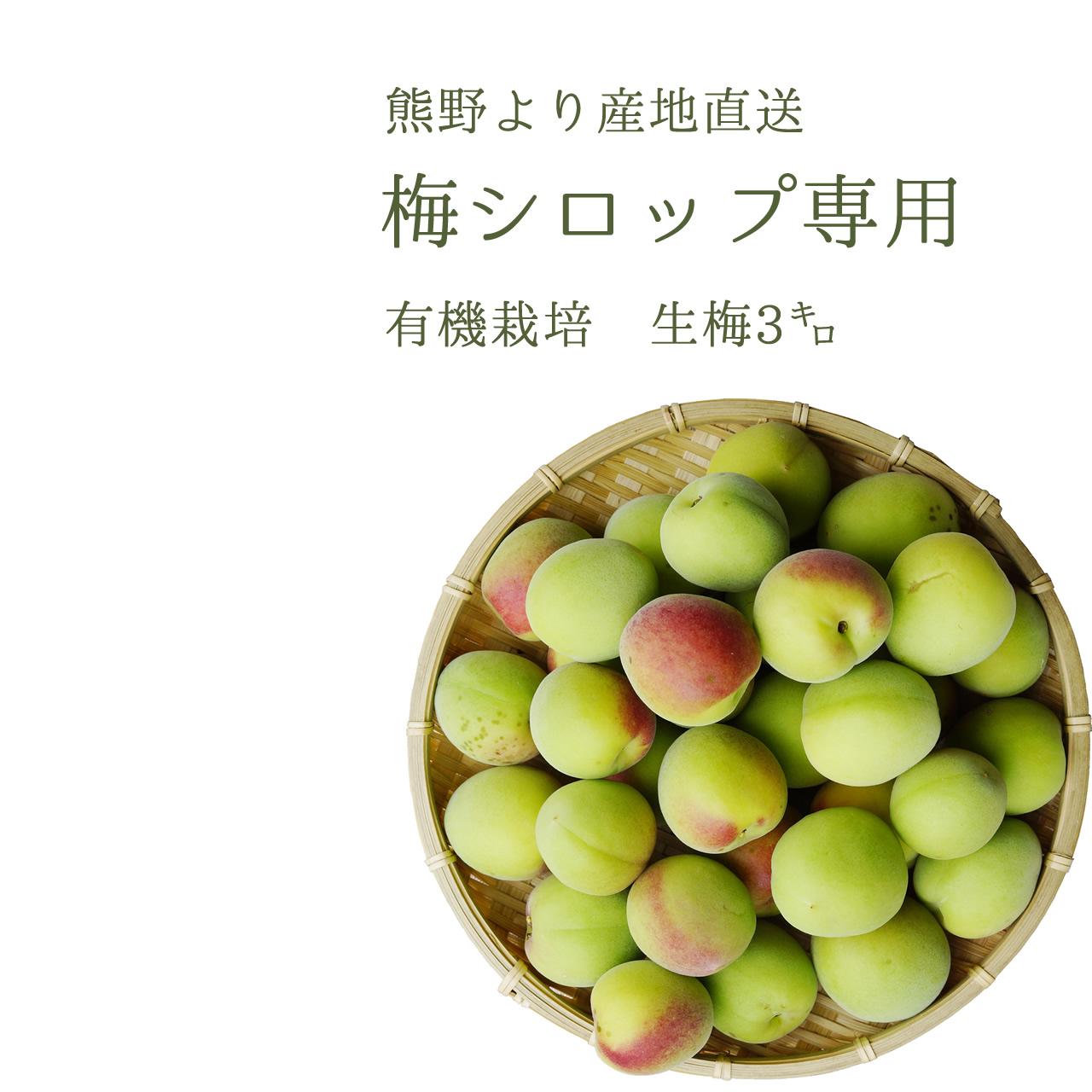 やさしい梅屋さんの 有機栽培生梅(青梅) 梅シロップ用の生梅(紀州 和歌山県産) 3kg【冷蔵配送】