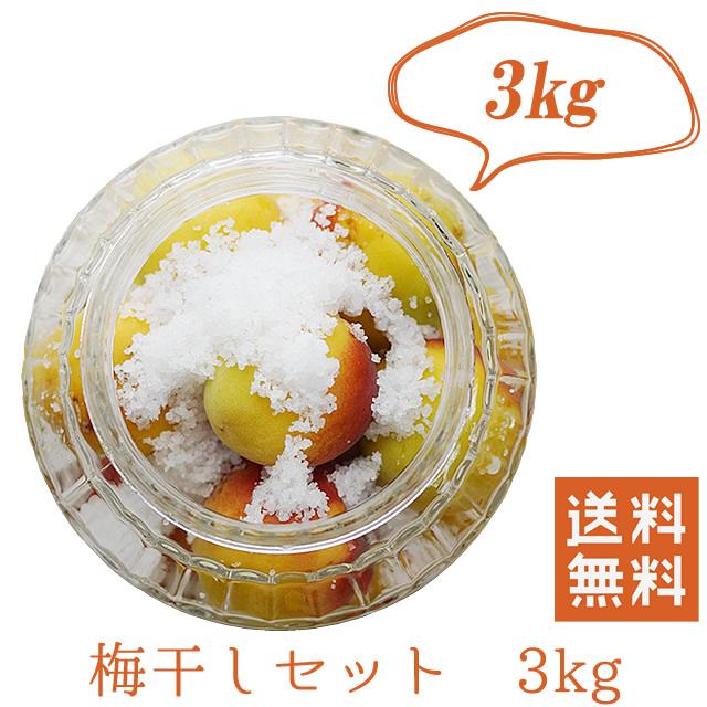 熊野有機生完熟梅(生梅) 梅干し作り専用生梅 3kg+天然海水塩(180g×3袋)【冷蔵配送料無料】