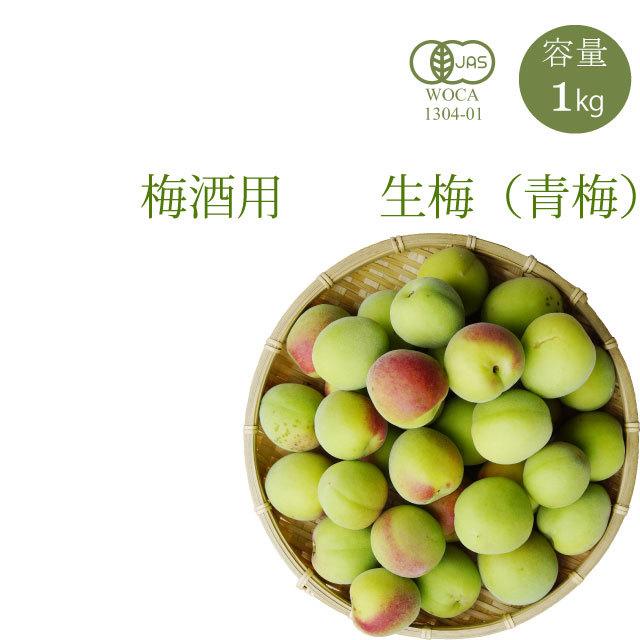 やさしい梅屋さんの 有機栽培生梅(青梅) 梅酒用の生梅(紀州 和歌山県産) 1kg【冷蔵配送】