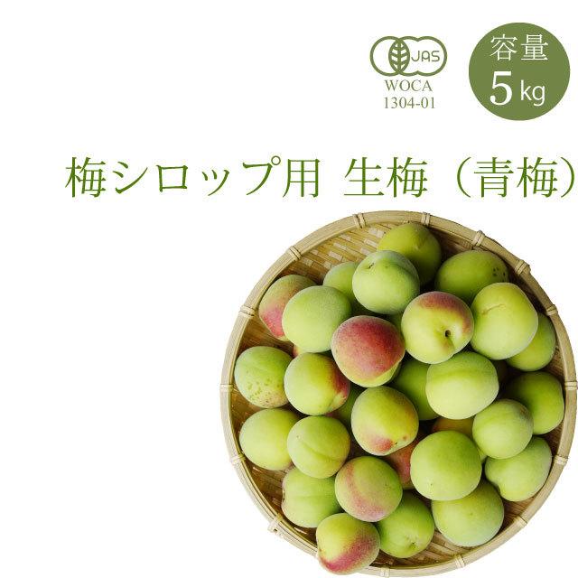 やさしい梅屋さんの 有機栽培生梅(青梅) 梅シロップ用の生梅(紀州 和歌山県産) 5kg【冷蔵配送】