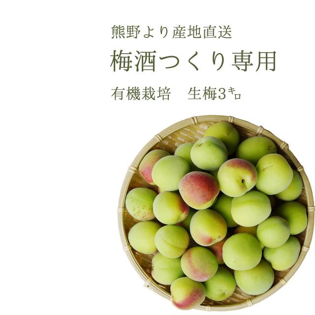 やさしい梅屋さんの 有機栽培生梅(青梅) 梅酒用の生梅(紀州 和歌山県産) 3kg【冷蔵配送】