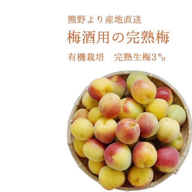 やさしい梅屋さんの 有機栽培完熟生梅(生梅) 梅酒専用の生梅(紀州 和歌山県産) 3kg【冷蔵配送】