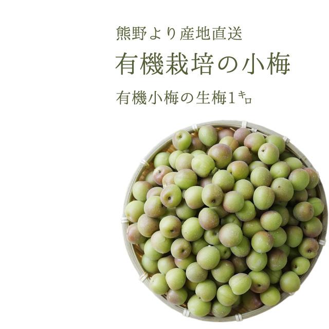 やさしい梅屋さんの 有機栽培生小梅(小梅) 梅シロップ、梅酒、梅干し用(紀州 和歌山県産小梅) 1kg【冷蔵配送】