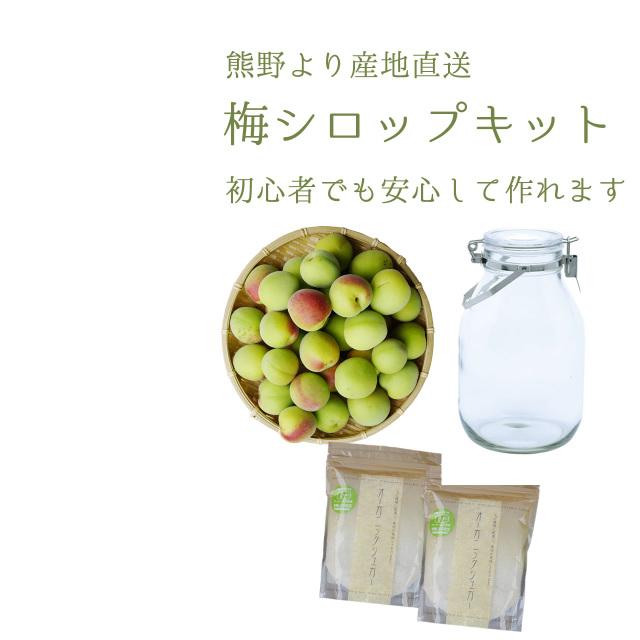 初めての梅シロップ作りを応援します 本格専門店の簡単梅シロップ入門キット(レシピ付き・送料無料)