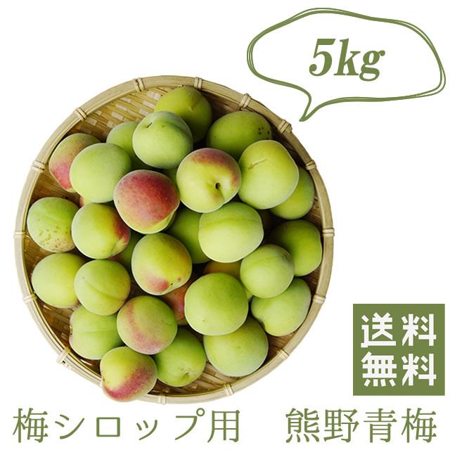 熊野有機生梅(青梅) 梅シロップ用の生梅(紀州 和歌山県産) 5kg【冷蔵配送料無料】