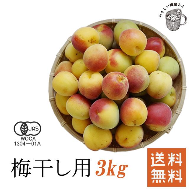 熊野有機生完熟梅(生梅) 梅干し作り専用の生梅(産直品) 3kg【冷蔵配送料無料】