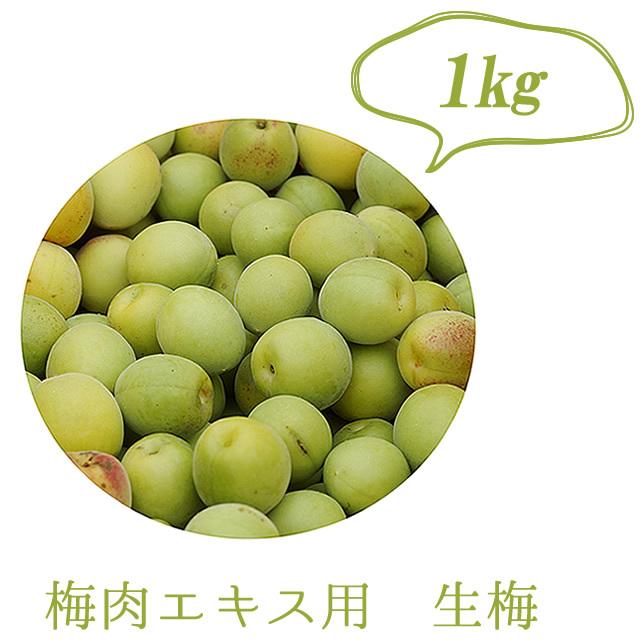 熊野より直送、有機栽培生梅(青梅) 梅肉エキス用の生梅(紀州 和歌山県産) 1kg【冷蔵配送】