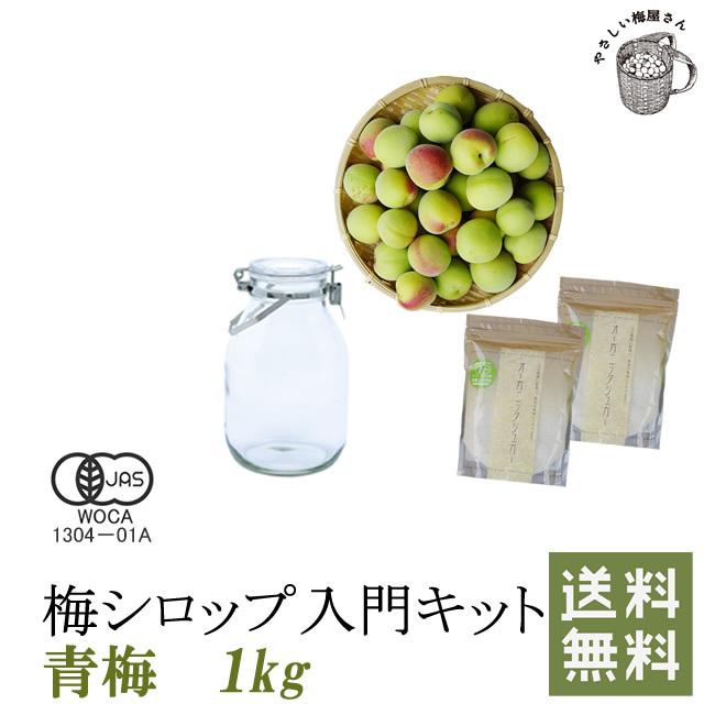 初めての梅シロップ作りを応援します 店長厳選 全部そろえました 簡単梅シロップ入門キット(レシピ付き) 1kg
