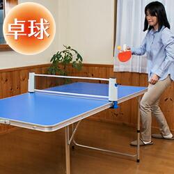卓球台 卓球セット 家庭用 テーブルピンポンセット