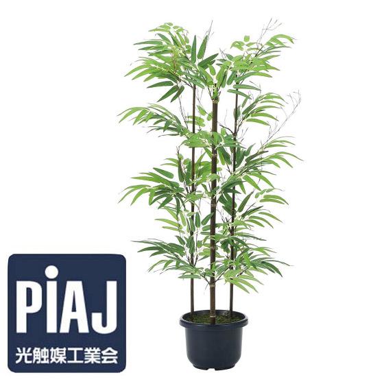 人工観葉植物 黒竹1.0