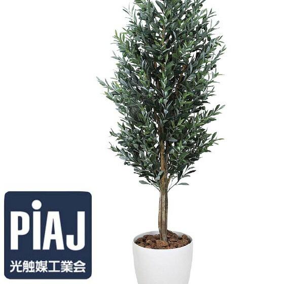 人工観葉植物 オリーブ1.6