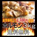 (送料無料)4,300円OFFホルモン【3kg】