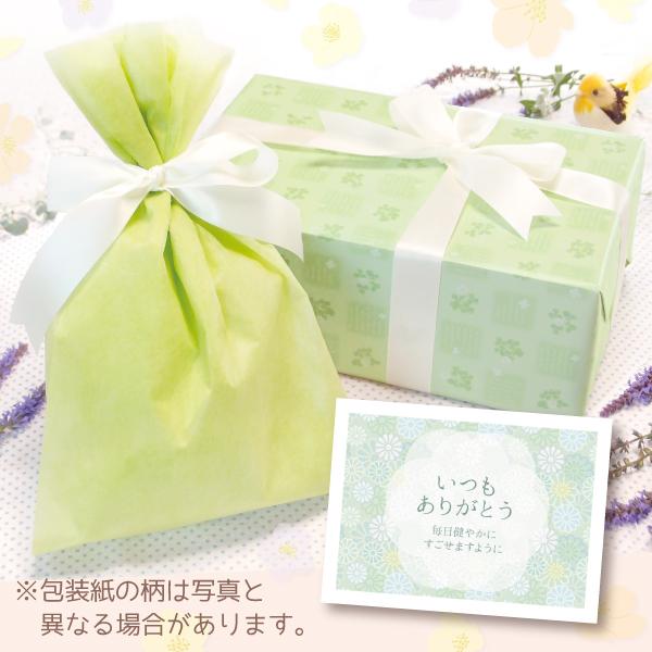 【単品注文不可】無料ラッピング+メッセージカードNo.10「菊(緑)」