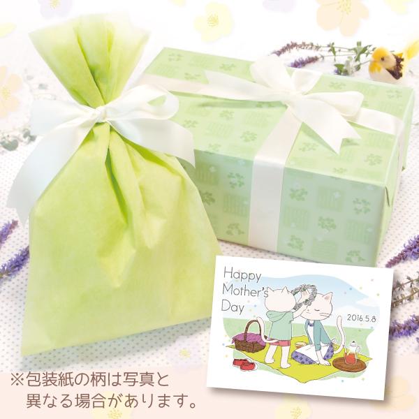 【単品注文不可】無料ラッピング+メッセージカードNo.15「母の日ねこ花冠」