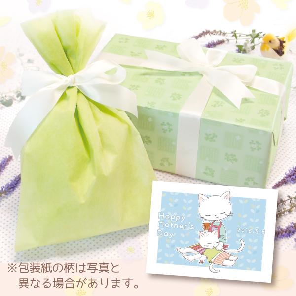 【単品注文不可】無料ラッピング+メッセージカードNo.19「母の日ねこ膝枕(水色)」