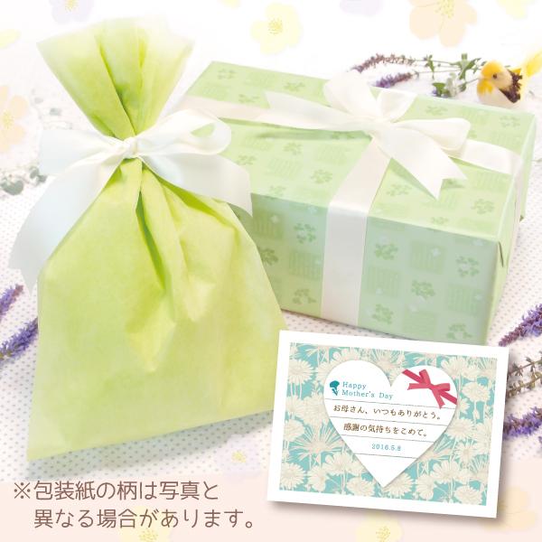 【単品注文不可】無料ラッピング+メッセージカードNo.22「母の日エレガント(水色)」