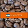 [ 受注後焙煎 ] エルサルバドル マラカラ農園 (100g単位) 【ゆうパケット可】