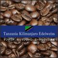 [ 受注後焙煎 ] タンザニア キリマンジャロ エーデルワイス農園 (100g) 【ゆうパケット可】