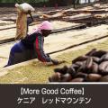 [ 受注後焙煎 ] 【More Good Coffee】ケニア レッドマウンテン (TINGANGA農園) (200g、500g)  【ゆうパケット可】