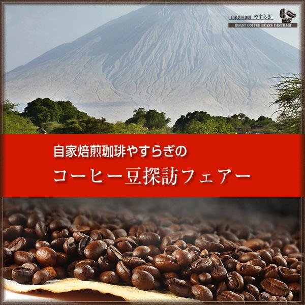 [ 受注後焙煎/コーヒー豆探訪第11回] ミャンマー 星山(SEIZAN) (100g)【ゆうパケット可】