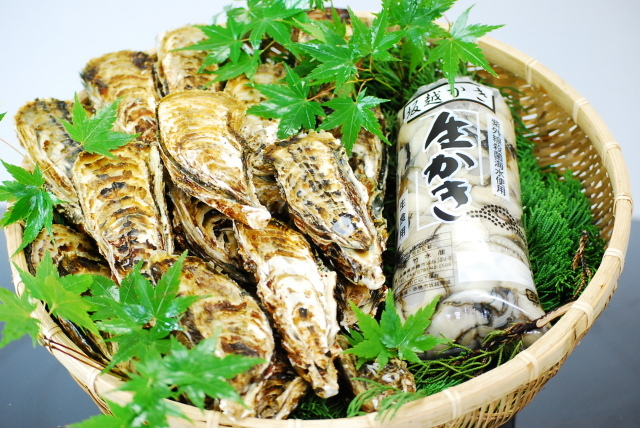おすすめセット殻付き牡蠣3.0kgと剥き身牡蠣500g×2 |送料別
