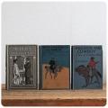 イギリス アンティークブック 3冊セット/古本/古書/洋書/インテリア雑貨/書籍/ディスプレイ【redskin and cowboy】M-378