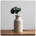 イギリス アンティーク 陶器ボトル/容器/ポット/インテリア雑貨/フラワーベース/花器【一輪挿しにいかがですか?】S-142
