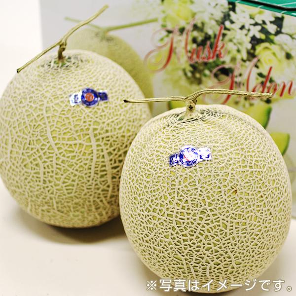 九州産マスクメロン(温室・2玉)