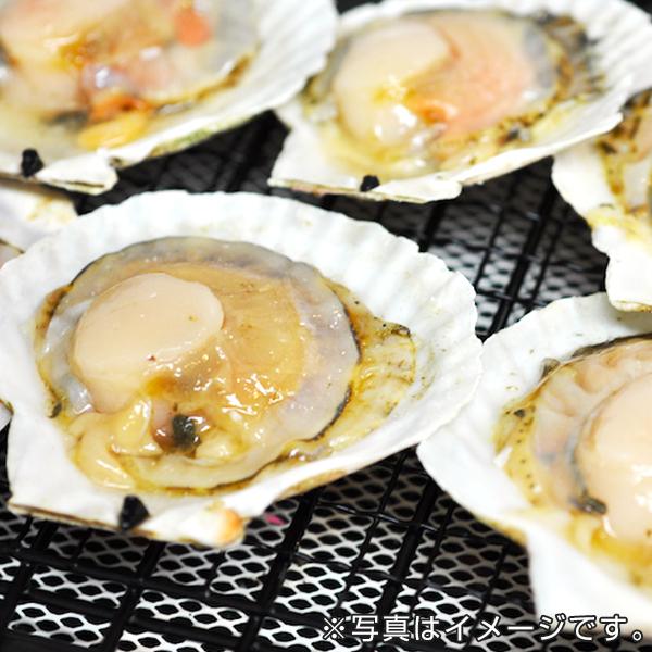 北海道産 片殻付帆立貝(20枚)