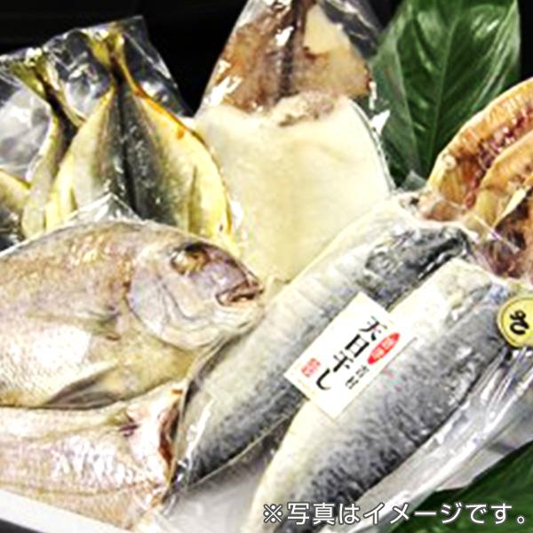 魚市場厳選 玄界灘の魚・一夜干し10枚セット