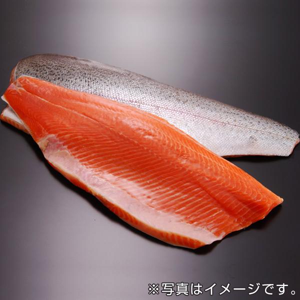 トラウトサーモン(半身・1.0kg~1.2kg)