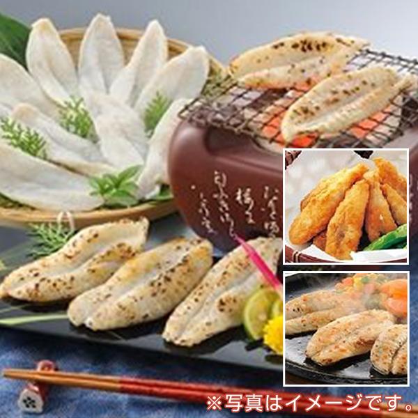 魚市場厳選 山口名産ふぐ三昧(ふぐステーキ・ふぐ唐揚げ・一夜干し)