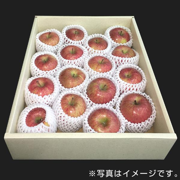 青果市場厳選 青森or長野産りんご(4kg・16玉前後)