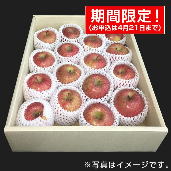 青果市場厳選 青森or長野産りんご(4kg・16玉前後) 【ギフトにおすすめ】