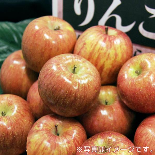 青果市場厳選 青森or長野産りんご(10kg・40玉前後)