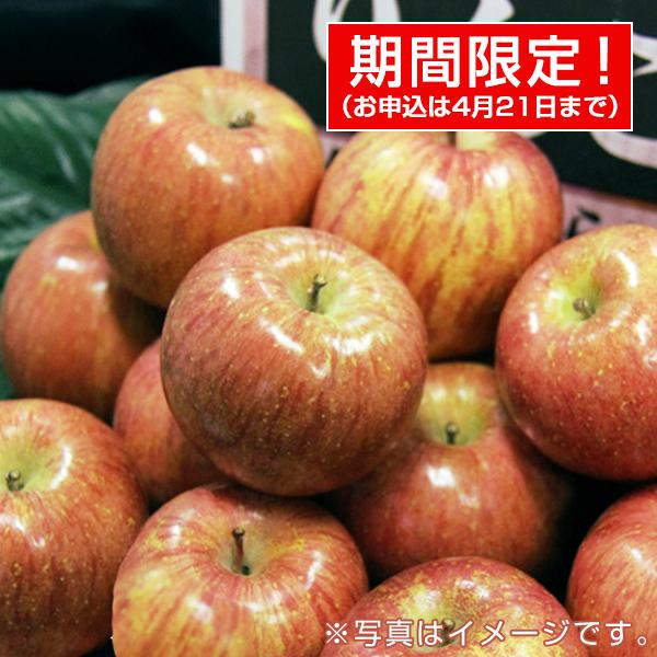 青果市場厳選 青森or長野産りんご(10kg・40玉前後) 【ギフトにおすすめ】