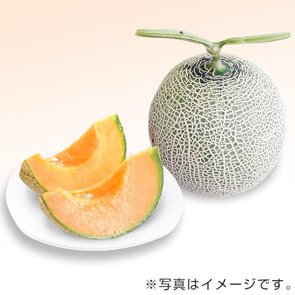 赤肉メロン(温室 2玉)九州産
