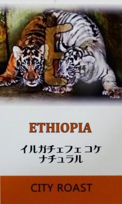 エチオピア イルガチェフェ ナチュラル スペシャルロット(シティロースト=中煎り) コーヒー豆