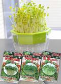 キッチン菜園#120 3個組栽培セット