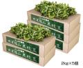 黒枝豆2束×5箱
