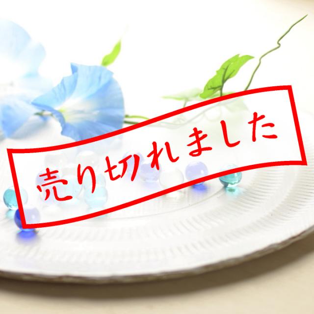 丸大皿(白釉)_たさうら 畠賢 作