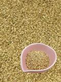 業務用発芽玄米
