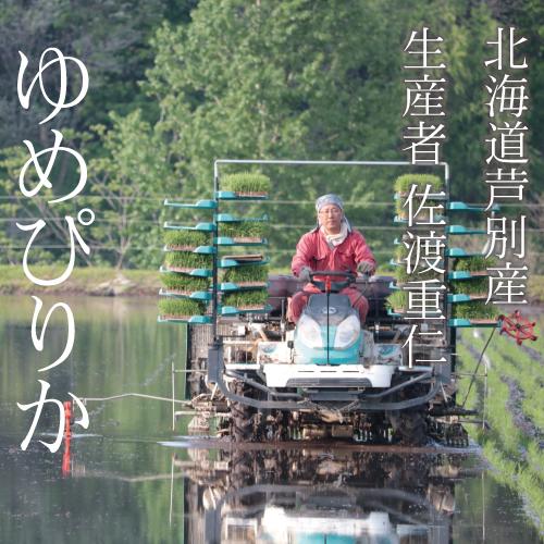【令和2年産】佐渡さんのゆめぴりか 15kg 北海道芦別市産